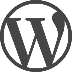 WordPress Logo web site security